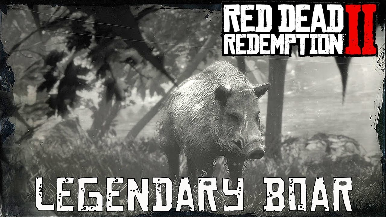 Red Dead Redemption 2 Legendary Animals boar