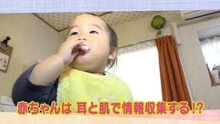 12月9日にテレビ西日本で放送された内容です。 「はぐはぐ」は、日々子...