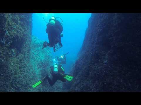 "tauchen auf Mallorca - Diving with ""Dive & Fun"" - Big Cheese - Käse - Font de Sa Cala - 2014.09.13"