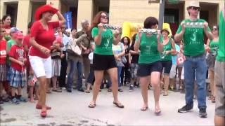 Canada Day 2014: Samba Elegua (Finale) Mississauga