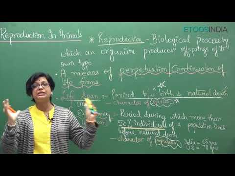NEET video lectures of Reproduction in Organisms by Dr  Akanksha Aggarwal AA  Mam