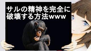 サルの精神を完全に破壊する方法wwwwww【2ch】 まずボタンを押す...