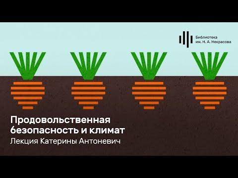 «Продовольственная безопасность и климат». Лекция Катерины Антоневич