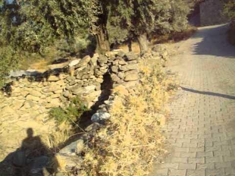 mazı köyü, bodrum 7/20 - youtube
