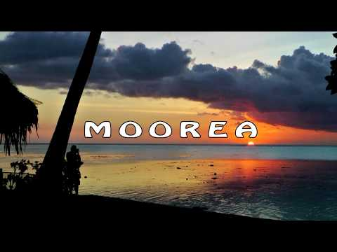 French Polynesia - Moorea  -  short cycling tour
