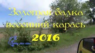 Каховский карась, Золотая балка весной, в конце информация!
