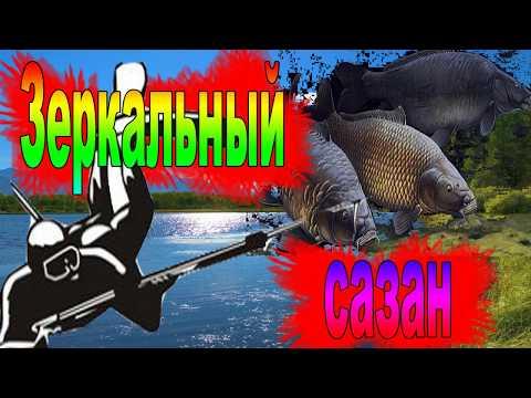 подводная охота зеркальный сазан