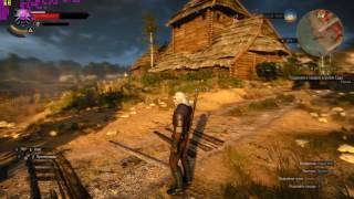 The Witcher 3 Wild Hunt GTX 1070 i5 2500K Max Settings Gameplay