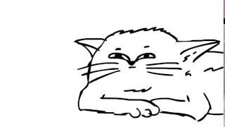 Кот - Анимация
