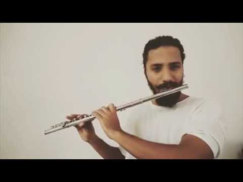 Minnale - Flute Bgm (Cover)