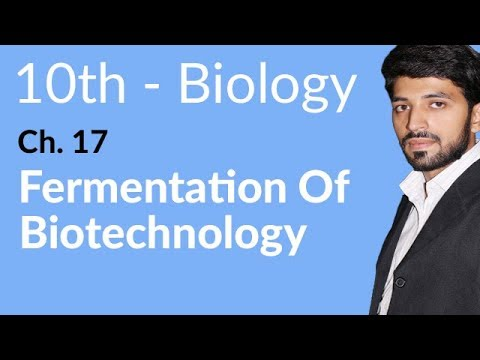 biology chapter 13 Chapter 13 guided reading ap biology answers epub download chapter 13 guided reading ap biology answers in epub format in the website you will find a large variety of epub, pdf, kindle, audiobook, and books.