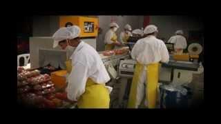 Higiene y Manipulación de Alimentos Cap 04.mp4