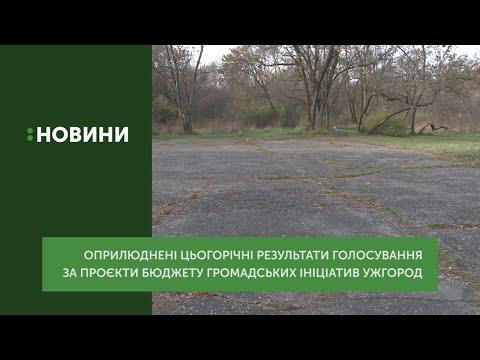 3 з 9 проєктів бюджету громадських ініціатив Ужгорода набрали необхідну кількість голосів