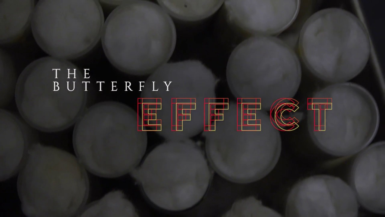 Preview image for The Butterfly Effect video