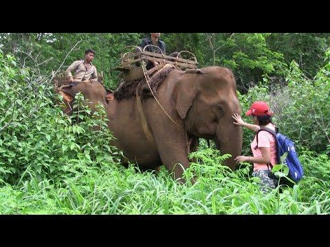 Travel in Cambodia You Tube MundolKiri Part 04