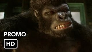 "The Flash 2x07 Promo ""Gorilla Warfare"" (HD)"