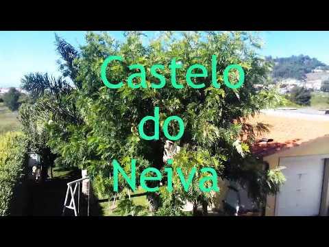 Gonçalo Barbosa | Castelo Neiva  - Apresentação dos alunos [2018/2019]