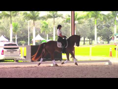 Debbie McDonald: How To Create Suspension In The Trot In Dressage