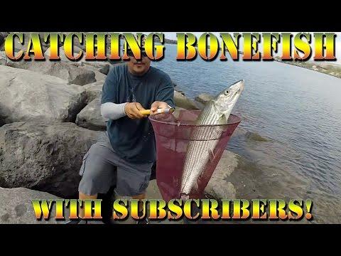 Catching Oio (Bonefish), Tako (Octopus) - Hawaii Fishing With Subscribers! - B.O.D.S. - Episode 16