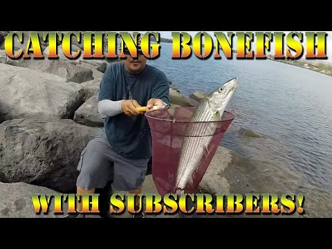 Catching Oio (Bonefish), Tako (Octopus) - Hawaii Fishing With Subscribers! - B.O.D.S. - Episode 16