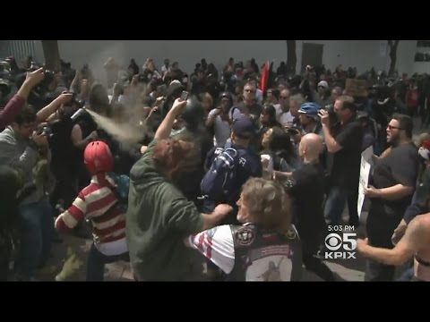 Bloody Clashes As Trump Protesters, Supporters Exchange Blows At Berkeley Rally