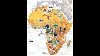Африка и Китай