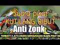 Kombinasi Suara Pikat Kutilang Ribut Anti Zonk  Mp3 - Mp4 Download
