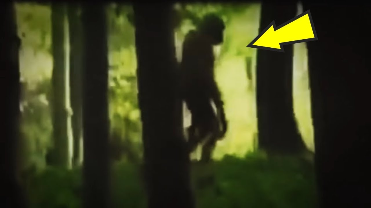 5 Humanoids Caught On Camera & Spotted In Real Life! - YouTube