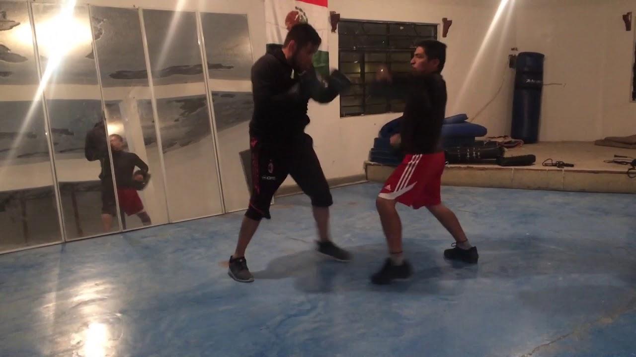 artes marciales mixtas entrenamiento para principiantes