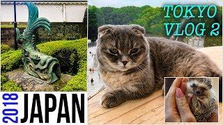 Japan VLOG Tokyo DAY 2 : Free SKY high views, ANIMAL cafes, RUBBISH island, Robots, Moomin Trolls
