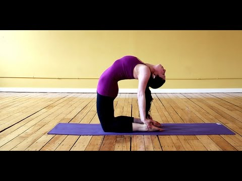 yoga for back pain beginners  youtube