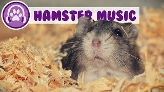 Music for Hamsters - Relaxing ASMR for Your Hamster! (TESTED) screenshot 5