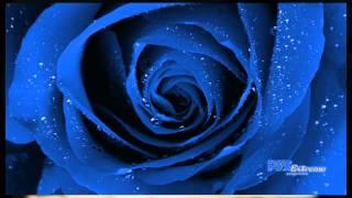 3- Romance Dance / Govi
