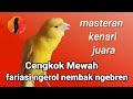 Gacor Kenari Super Bongkar Isian Untuk Pancingan Dan Masteran  Mp3 - Mp4 Download
