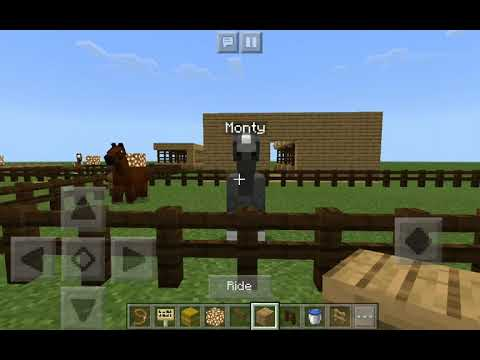 how-to-breed-horses-in-minecraft!🐴