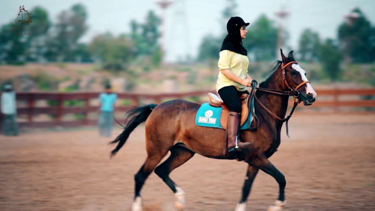 Horse Riding Club at Bahria Town Lahore - YouTube