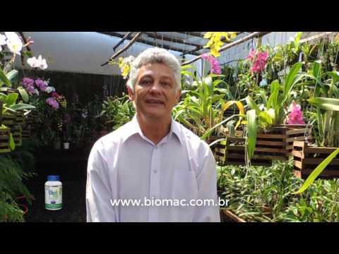 O que o Biomac pode fazer por quem tem Fibromialgia