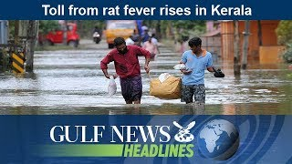 Toll from rat fever rises in Kerala - GN Headlines