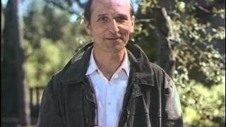 О гармонии жизни (Время печали ещё не пришло.1995)
