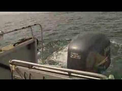 Divers solve maritime mystery