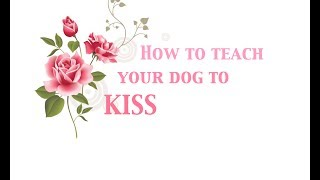 ❤how To Teach Your Dog To Kiss U On Command❤