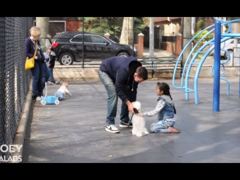 The social problem and threats of child abduction