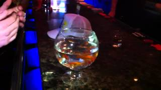 Goldfish Chug