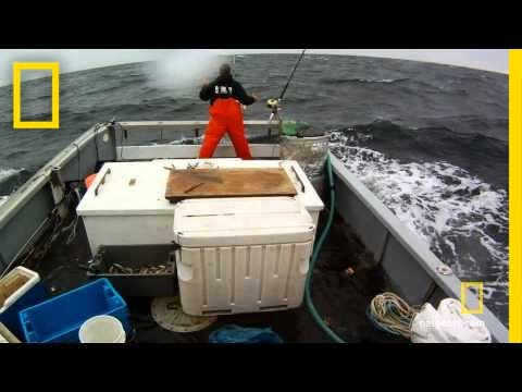 Stormy Catch | Wicked Tuna