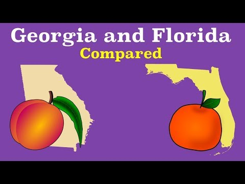 Florida and Georgia Compared
