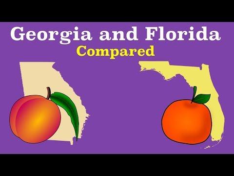 Florida and Georgia