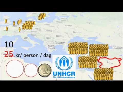 Hans Rosling förklarar Sverigedemokraterna politik
