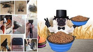 Чесалка-щетка и поилка-миска переносная для вашей собаки и кошки