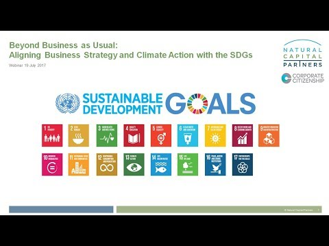 Beyond Business as Usual: Aligning Business Strategy and Climate Action with the SDGs
