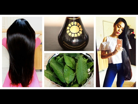 How To Use Guava Leaves For Hair Growth -Stop Hair Loss & Get Rid of Dandruff-Beautyklove